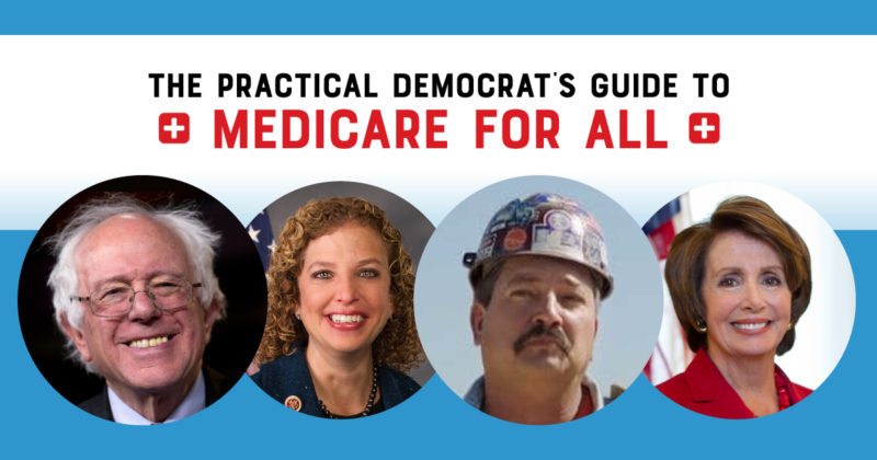Is Medicare for All Politically Viable? A Guide to 561 Congressional Candidates.